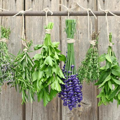 Caribbean bush herbs for natural soaps